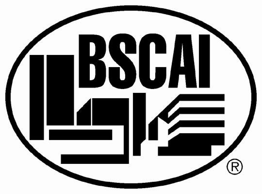 BSCAI-JPG-Logo